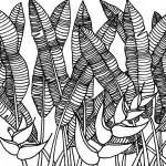Domique, heliconias - 15cmx15cm - feutre -- (c) 2013 D. Deleglise
